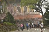 2013天元宮:1831719178.jpg