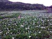北台灣:1246772926.jpg