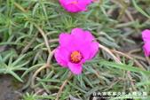 台北市客家文化主題公園:1669915124.jpg
