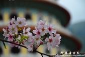 2013天元宮:1831719081.jpg