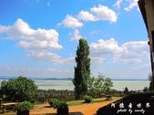 Badacsony葡萄園:1576022093.jpg