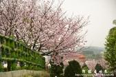 2013天元宮:1831719156.jpg