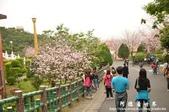 2013天元宮:1831719158.jpg