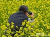 2011富里花海:1837852859.jpg