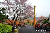 2013天元宮:1831719086.jpg