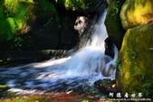 2013前山公園藍鵲:1308876432.jpg