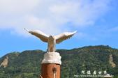 滿州花海-大冠鷲:1693316076.jpg