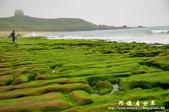 2013老梅綠色石槽:1549691901.jpg