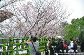 2013天元宮:1831719153.jpg