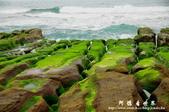 2013老梅綠色石槽:1549691883.jpg