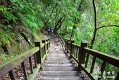 內洞森林遊樂區:1569219326.jpg