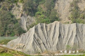 牛埔生態泥岩:1835233315.jpg