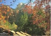 Zion國家公園:1661278317.jpg