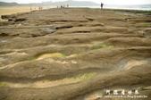 2013老梅綠色石槽:1549691880.jpg