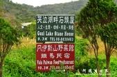 東源濕地-哭泣湖:1356069171.jpg