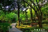 2013前山公園藍鵲:1308876435.jpg