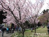 2011陽明山花季:1481334695.jpg
