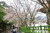 2013天元宮:1831719137.jpg