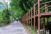 內洞森林遊樂區:1569219317.jpg