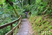 內洞森林遊樂區:1569219323.jpg