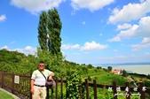 Badacsony葡萄園:1576022072.jpg