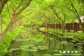馬太鞍濕地-光復糖廠:1055055631.jpg
