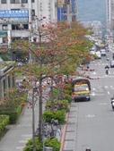 北台灣:1246764436.jpg