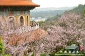 2013天元宮:1831719170.jpg