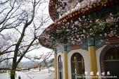 2013天元宮:1831719132.jpg