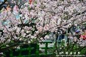 2013天元宮:1831719105.jpg