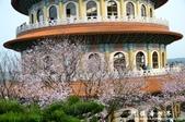 2013天元宮:1831719174.jpg