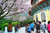 2013天元宮:1831719100.jpg