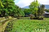 2013前山公園藍鵲:1308876424.jpg