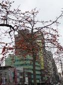北台灣:1246764433.jpg