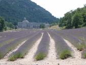 法國-暜羅旺斯provence:1069483795.jpg