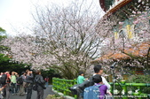 2013天元宮:1831719142.jpg