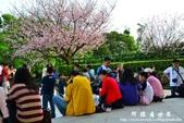 2013天元宮:1831719101.jpg