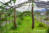 馬太鞍濕地-光復糖廠:1055055621.jpg