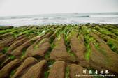 2013老梅綠色石槽:1549691882.jpg