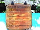 魚木-台大:1361060022.jpg