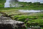 2013老梅綠色石槽:1549691872.jpg