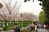 2013天元宮:1831719155.jpg