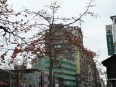 北台灣:1246764432.jpg
