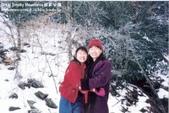 大煙山國家公園:1570194169.jpg