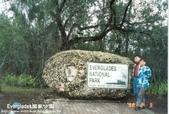 沼澤國家公園:1014382419.jpg