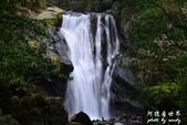 內洞森林遊樂區:1569219321.jpg