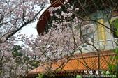 2013天元宮:1831719150.jpg