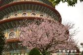 2013天元宮:1831719157.jpg