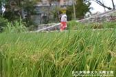 台北市客家文化主題公園:1669915120.jpg
