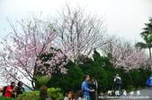 2013天元宮:1831719128.jpg